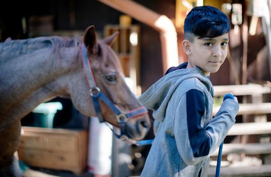 Kind führt ein Pferd